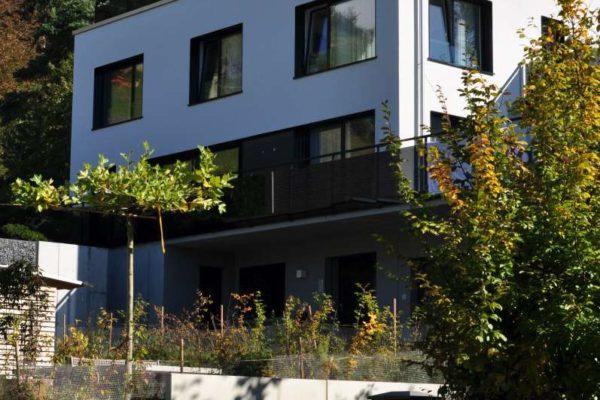EFH Neubau, Lenzburg