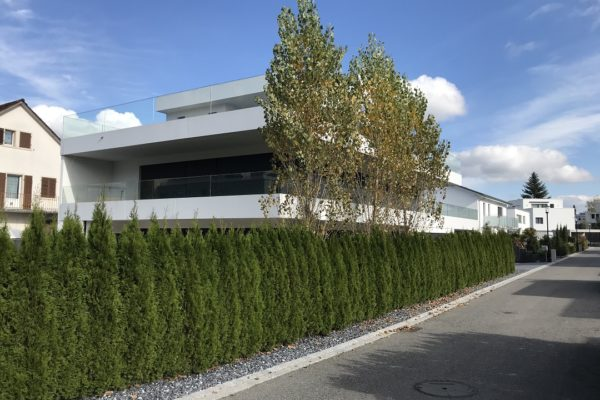 Neubau EFH, Staufen